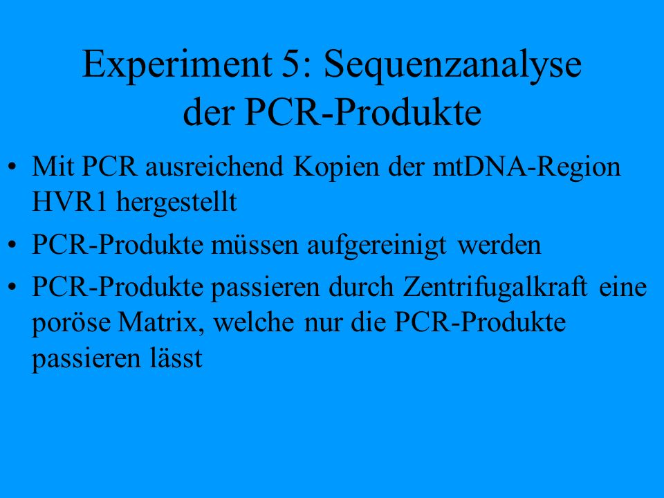 Experiment 5: Sequenzanalyse der PCR-Produkte