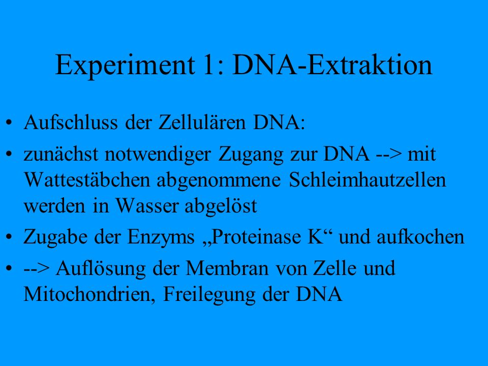 Experiment 1: DNA-Extraktion