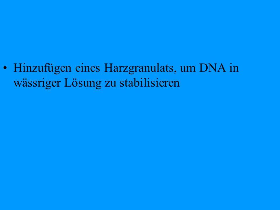 Hinzufügen eines Harzgranulats, um DNA in wässriger Lösung zu stabilisieren