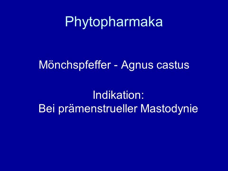 Phytopharmaka Mönchspfeffer - Agnus castus