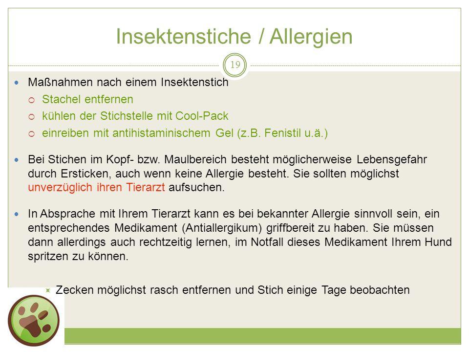 Insektenstiche / Allergien