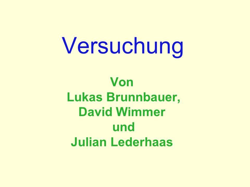 Von Lukas Brunnbauer, David Wimmer und Julian Lederhaas