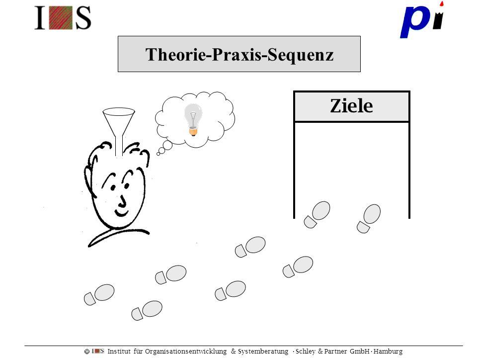 Theorie-Praxis-Sequenz