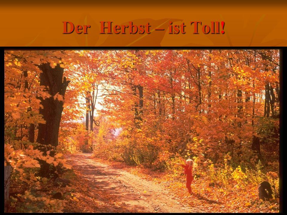 Der Herbst – ist Toll!