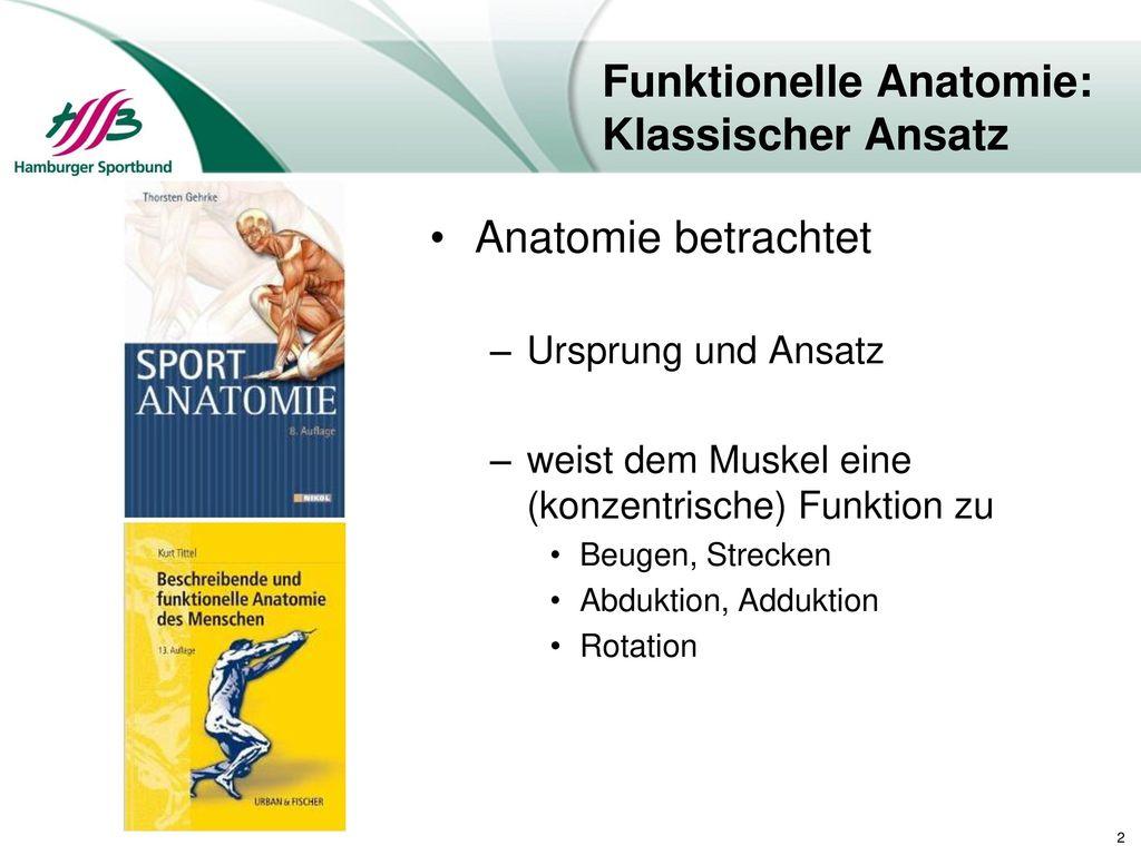 Gemütlich Funktionelle Anatomie Und Kinesiologie Ideen - Anatomie ...