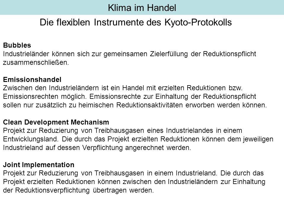 Die flexiblen Instrumente des Kyoto-Protokolls
