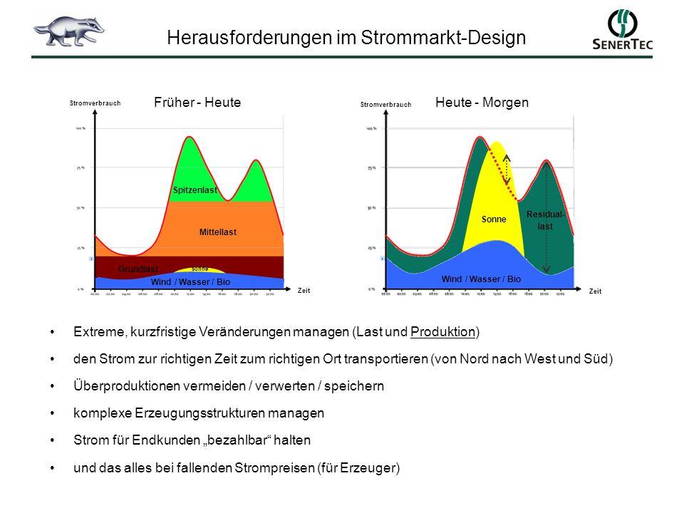 Herausforderungen im Strommarkt-Design