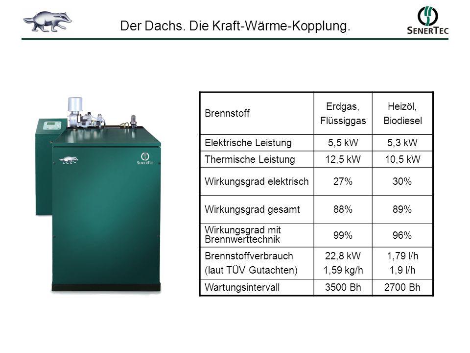 Der Dachs. Die Kraft-Wärme-Kopplung.