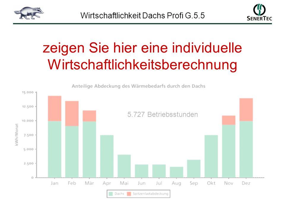 Wirtschaftlichkeit Dachs Profi G.5.5