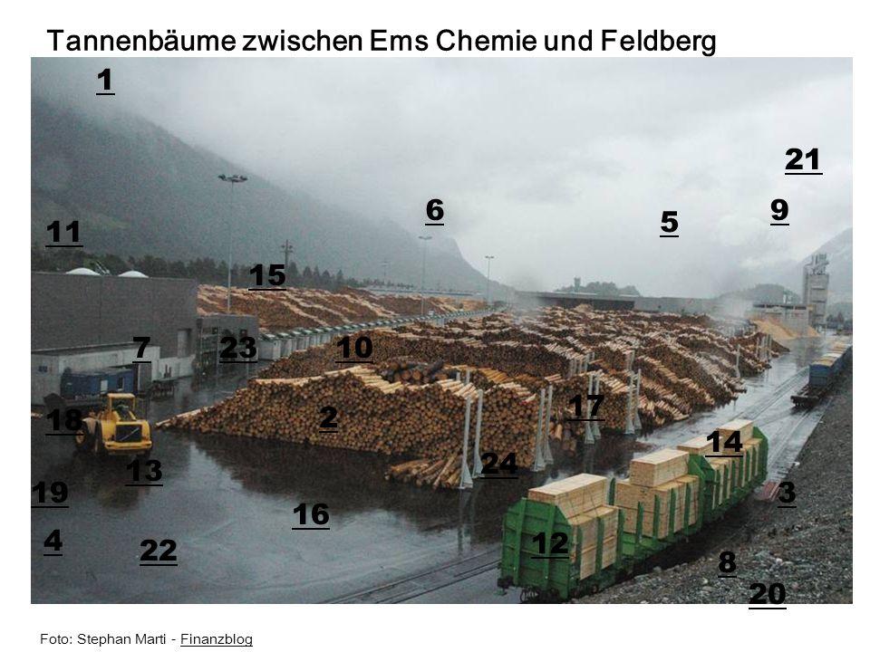 Tannenbäume zwischen Ems Chemie und Feldberg 1
