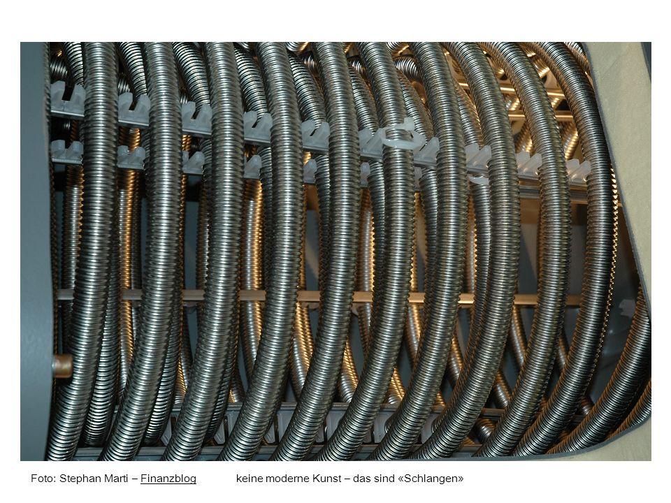 Foto: Stephan Marti – Finanzblog keine moderne Kunst – das sind «Schlangen»