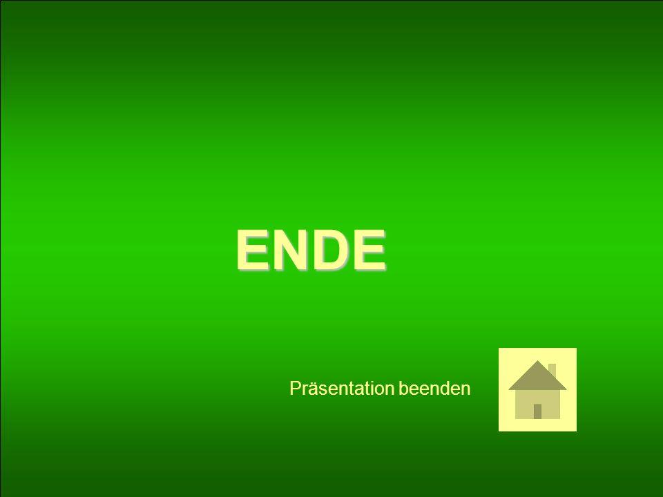 ENDE Präsentation beenden