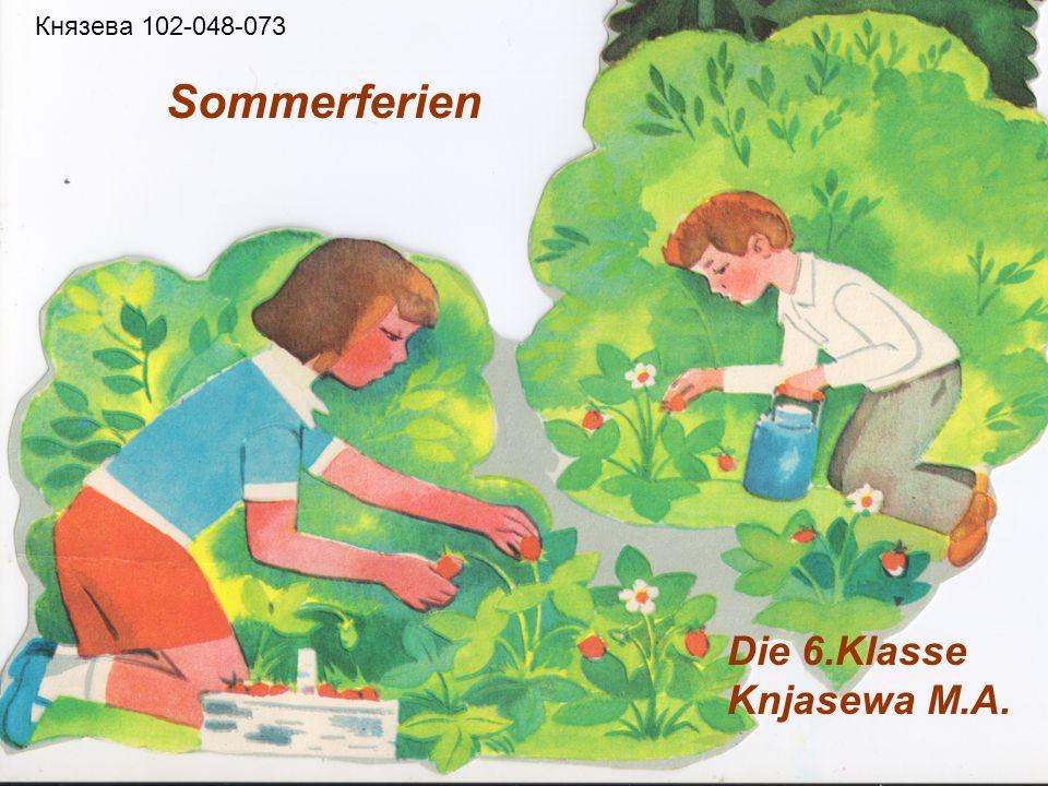 Sommerferien Князева 102-048-073 Die 6.Klasse Knjasewa M.A.