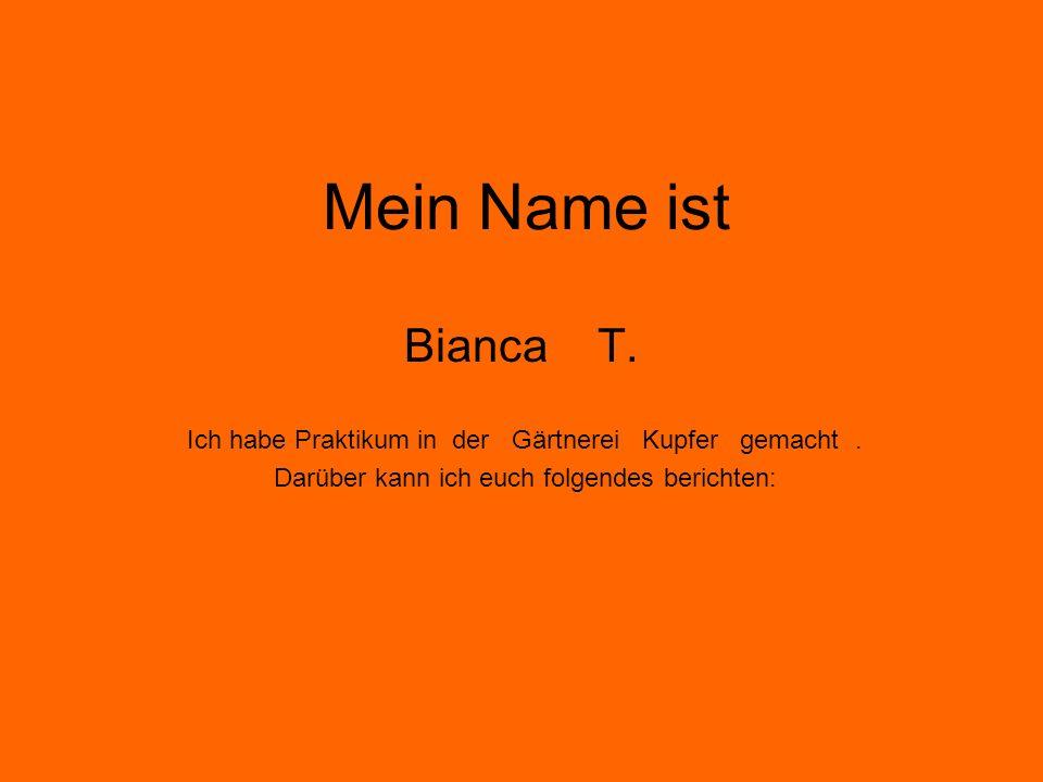Mein Name ist Bianca T. Ich habe Praktikum in der Gärtnerei Kupfer gemacht .