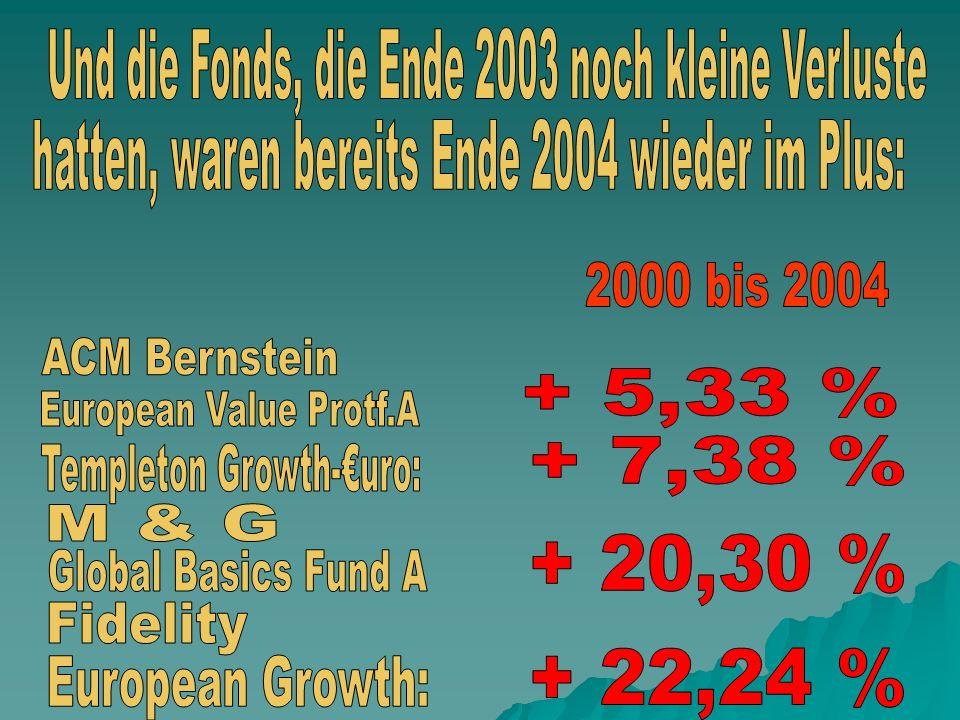 Und die Fonds, die Ende 2003 noch kleine Verluste