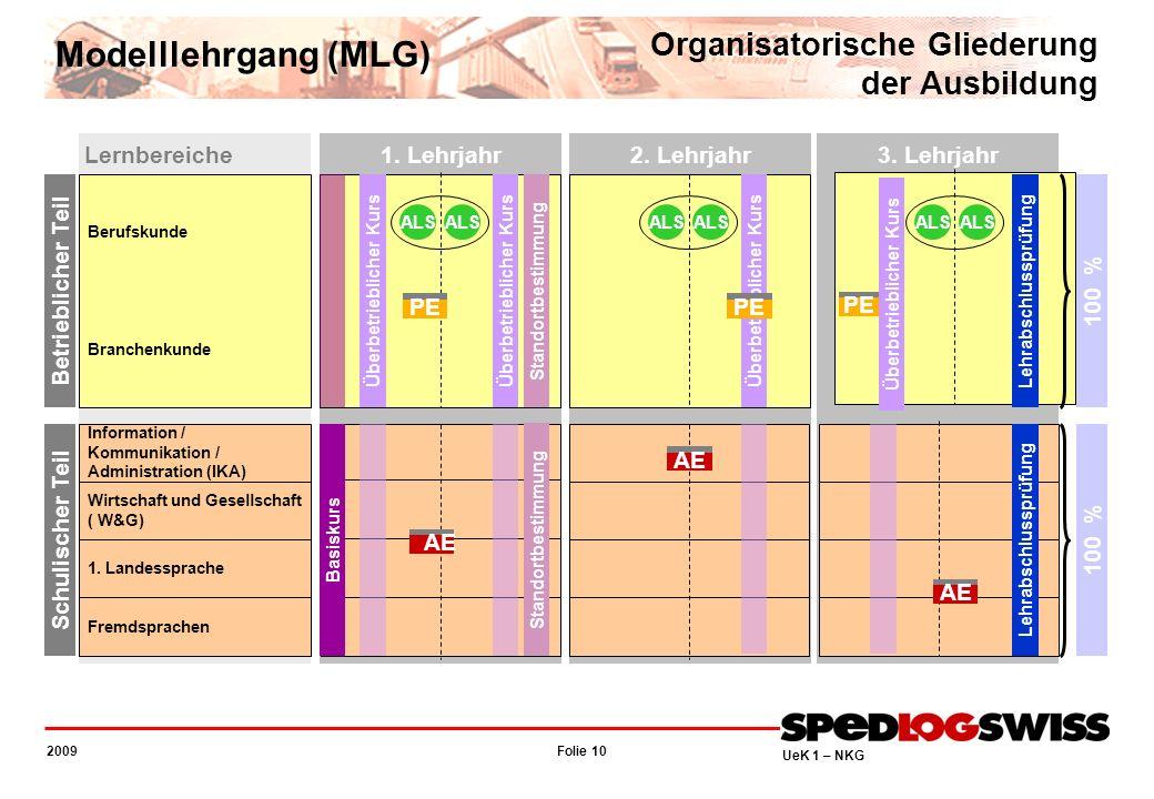 Modelllehrgang (MLG) Organisatorische Gliederung der Ausbildung