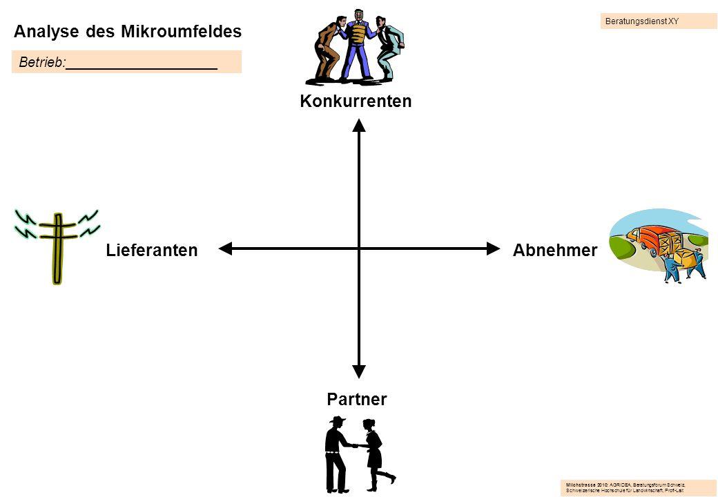 Analyse des Mikroumfeldes