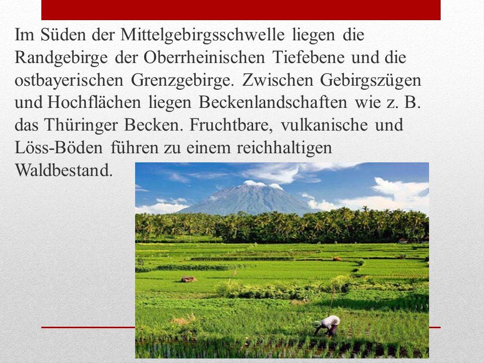 Im Süden der Mittelgebirgsschwelle liegen die Randgebirge der Oberrheinischen Tiefebene und die ostbayerischen Grenzgebirge.