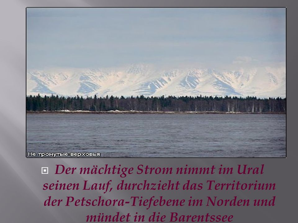 Der mächtige Strom nimmt im Ural seinen Lauf, durchzieht das Territorium der Petschora-Tiefebene im Norden und mündet in die Barentssee