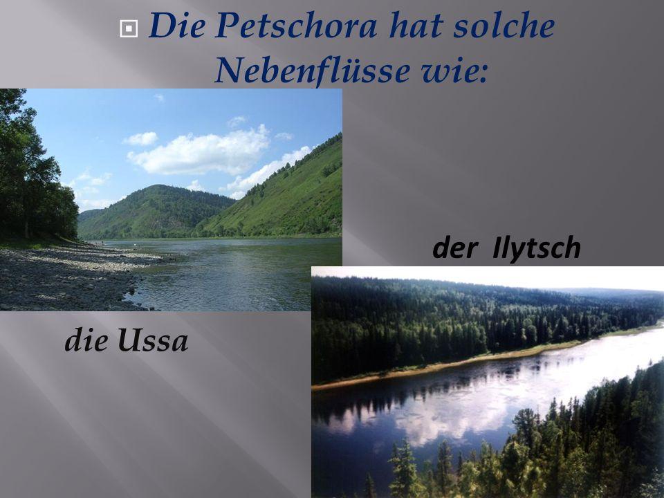 Die Petschora hat solche Nebenflüsse wie: