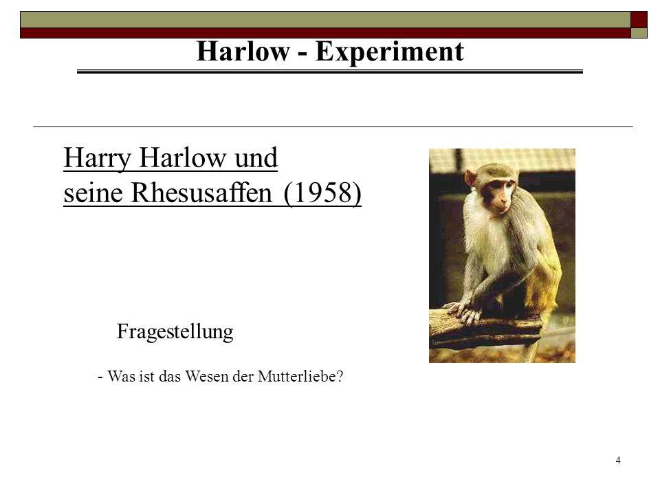 Harry Harlow und seine Rhesusaffen (1958)