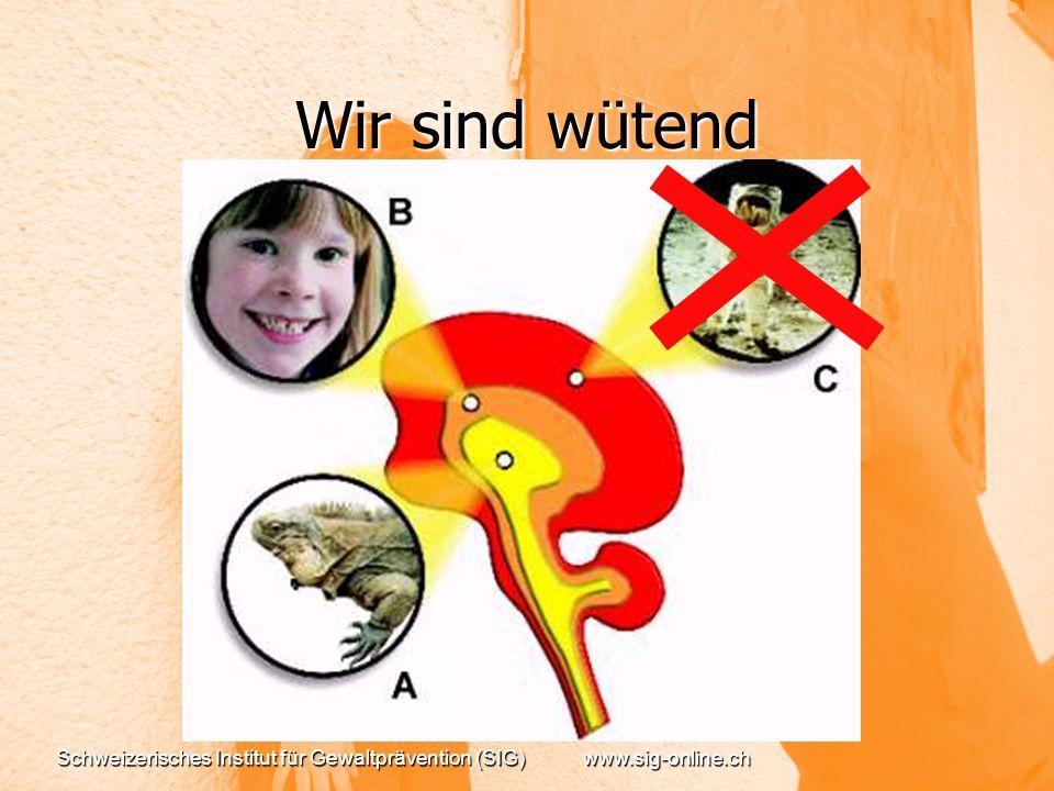 Wir sind wütend Schweizerisches Institut für Gewaltprävention (SIG) www.sig-online.ch