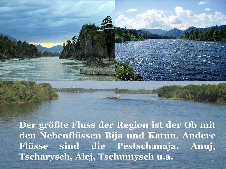 Der größte Fluss der Region ist der Ob mit den Nebenflüssen Bija und Katun.