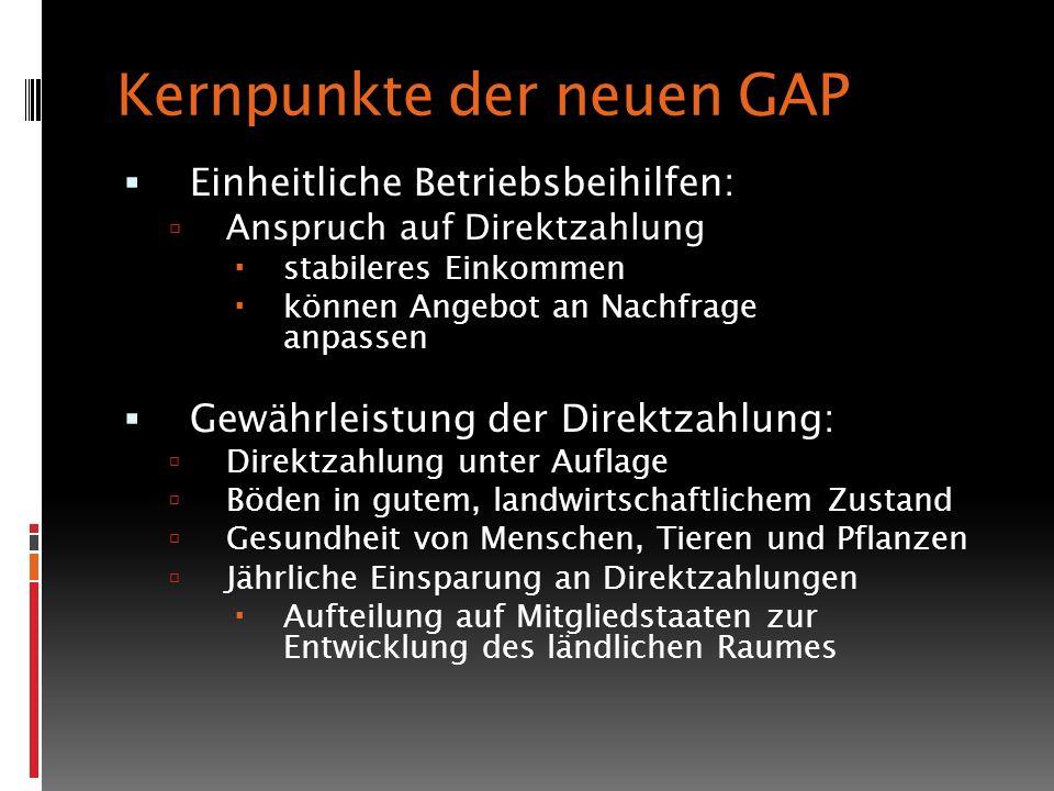 Kernpunkte der neuen GAP