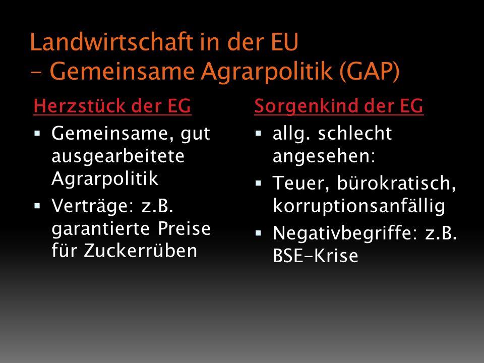 Landwirtschaft in der EU - Gemeinsame Agrarpolitik (GAP)