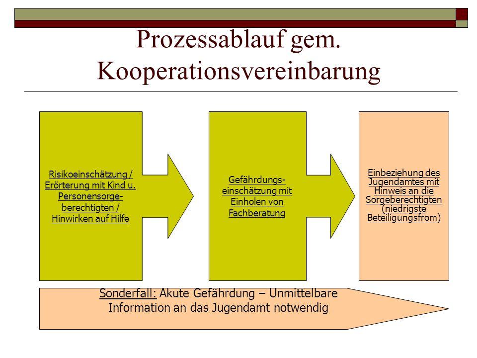 Prozessablauf gem. Kooperationsvereinbarung