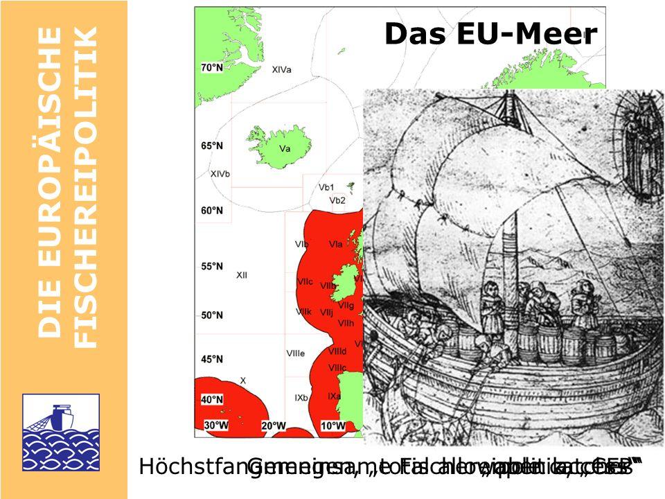 Das EU-Meer DIE EUROPÄISCHE FISCHEREIPOLITIK