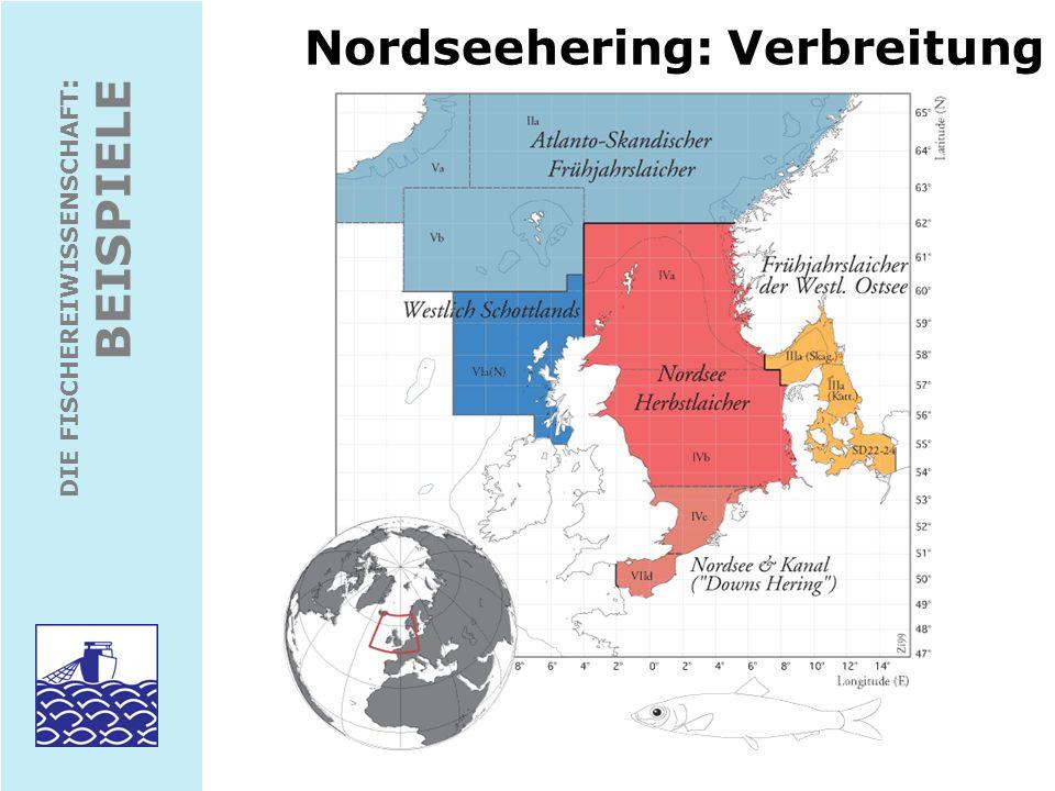 Nordseehering: Verbreitung