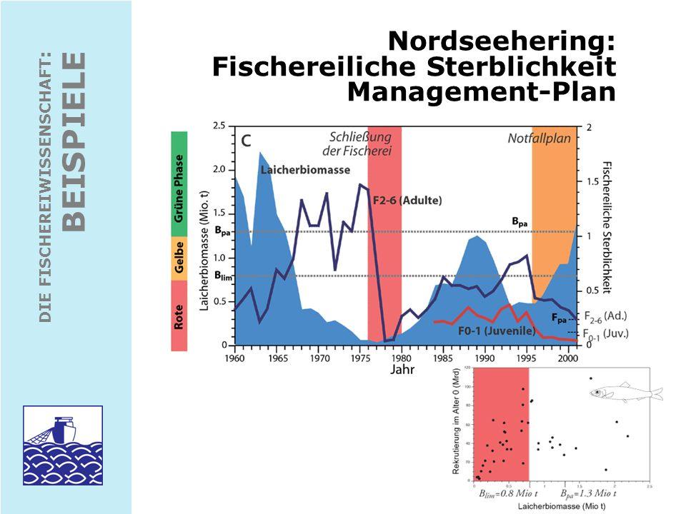 Nordseehering: Fischereiliche Sterblichkeit Management-Plan