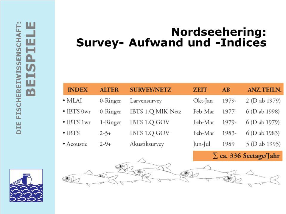 Nordseehering: Survey- Aufwand und -Indices