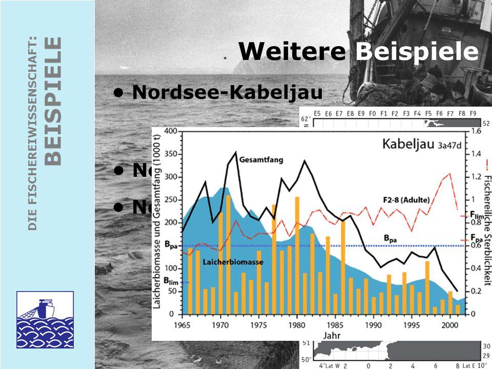 Weitere Beispiele BEISPIELE • Nordsee-Kabeljau • Nordostatl. Makrele