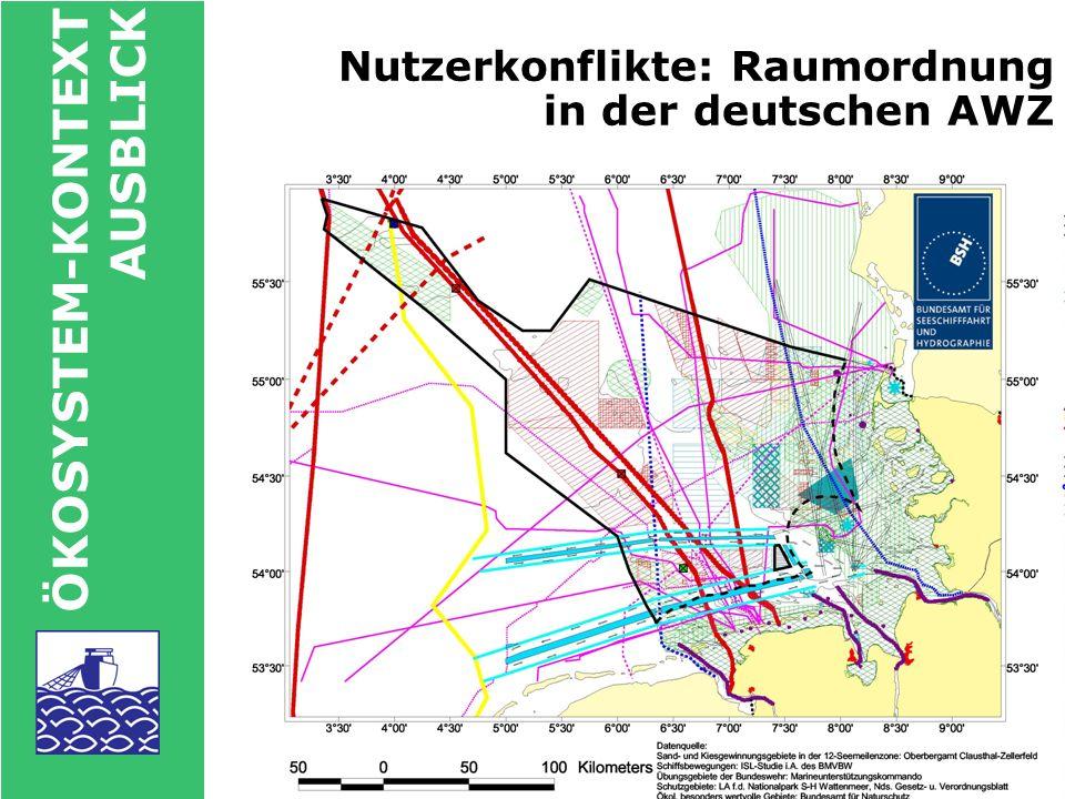 Nutzerkonflikte: Raumordnung in der deutschen AWZ