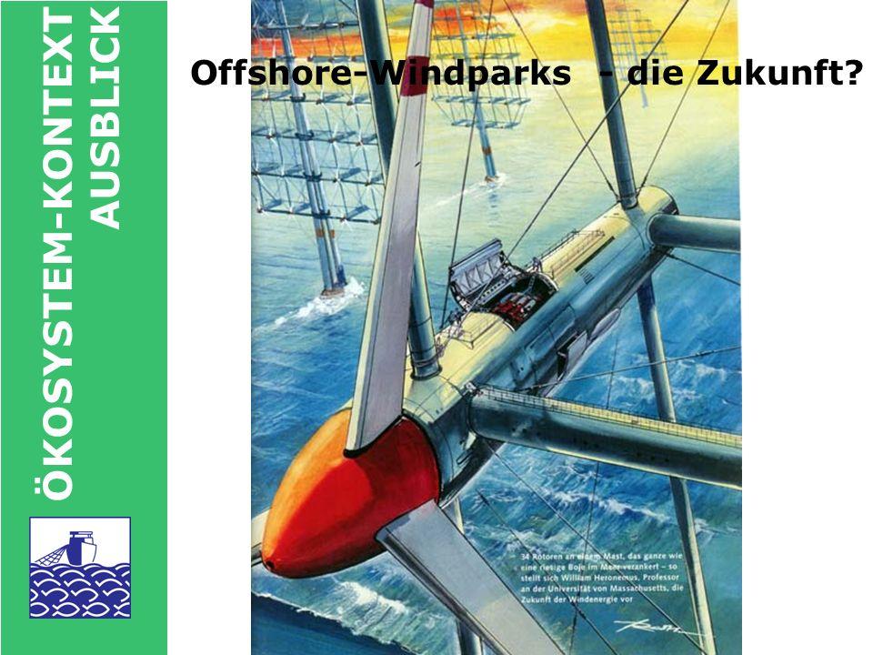 Offshore-Windparks - die Zukunft