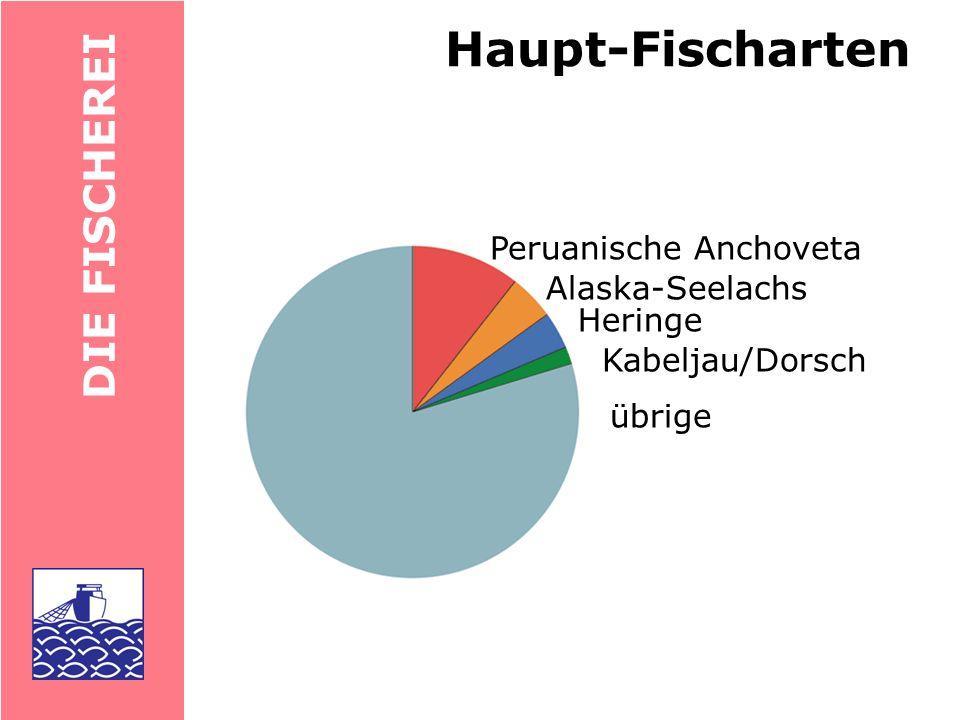 Haupt-Fischarten DIE FISCHEREI Peruanische Anchoveta Alaska-Seelachs