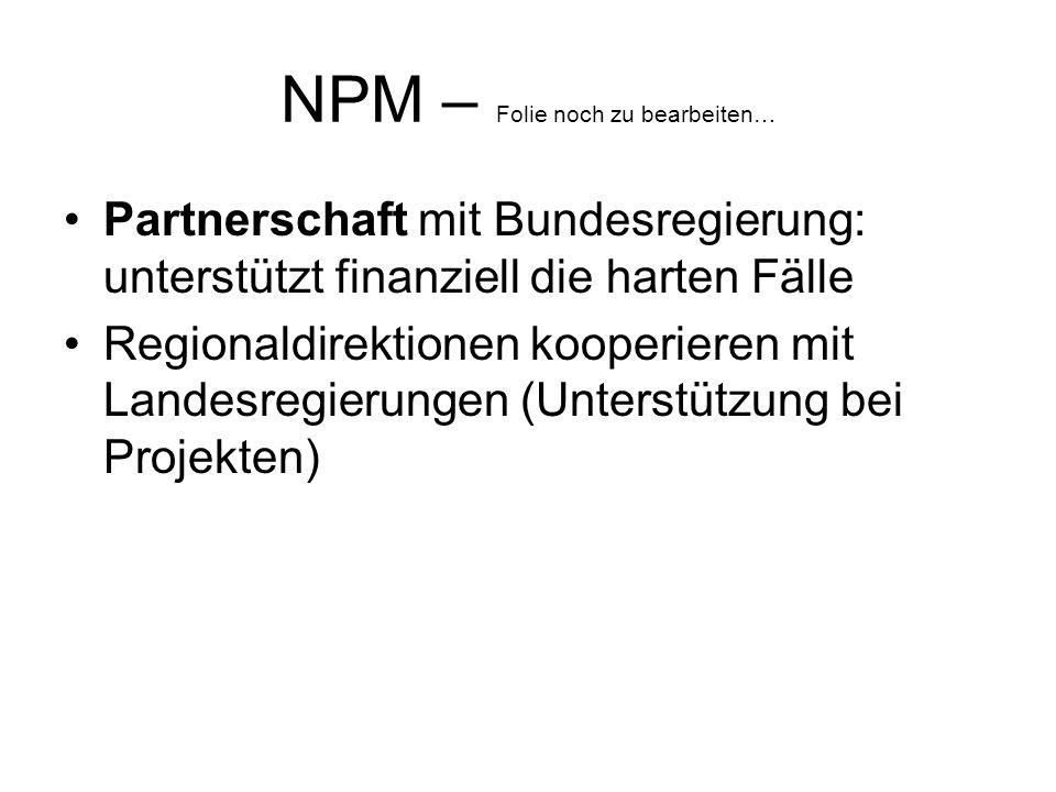 NPM – Folie noch zu bearbeiten…