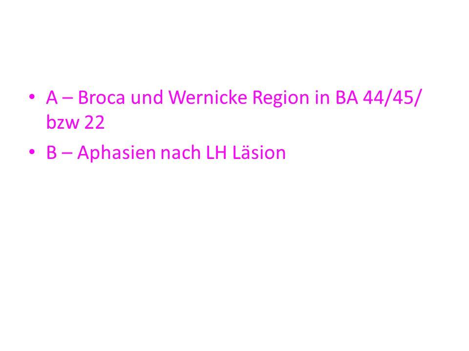 A – Broca und Wernicke Region in BA 44/45/ bzw 22