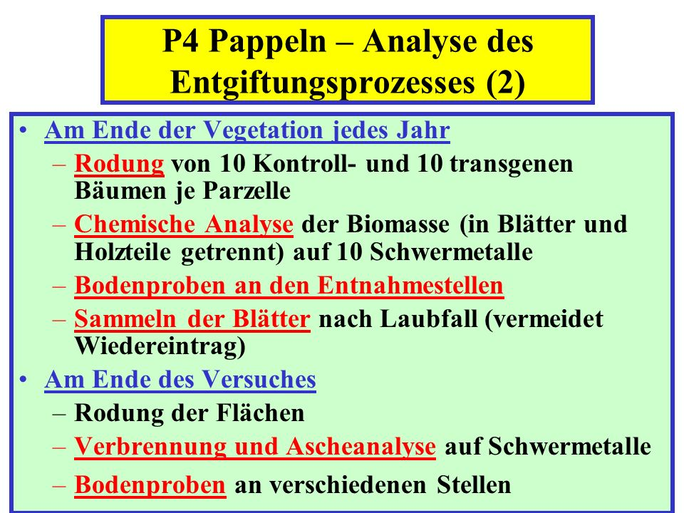 P4 Pappeln – Analyse des Entgiftungsprozesses (2)