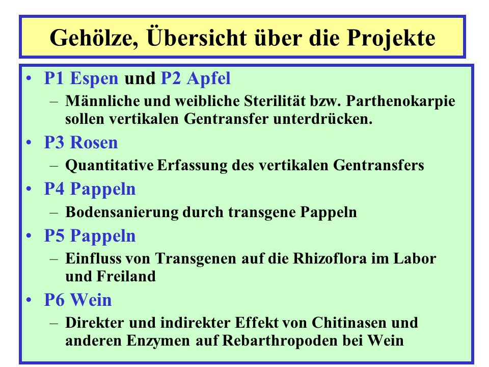 Gehölze, Übersicht über die Projekte