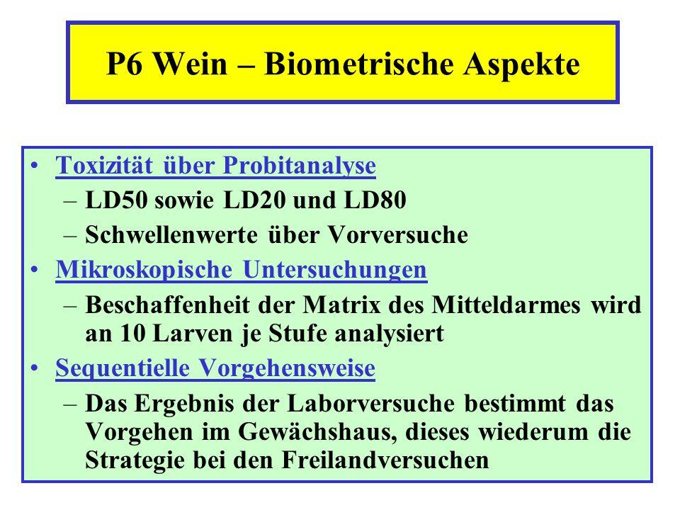 P6 Wein – Biometrische Aspekte