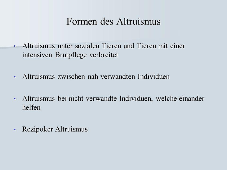 Formen des Altruismus Altruismus unter sozialen Tieren und Tieren mit einer intensiven Brutpflege verbreitet.