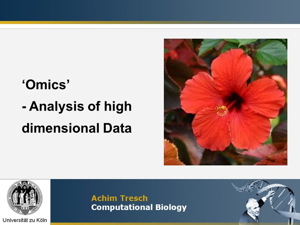 'Omics' - Analysis of high dimensional Data