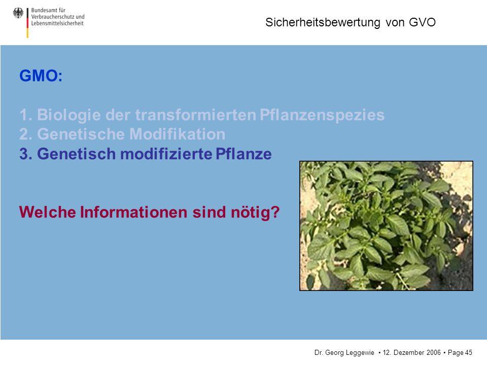 GMO: 1. Biologie der transformierten Pflanzenspezies. 2. Genetische Modifikation. 3. Genetisch modifizierte Pflanze.