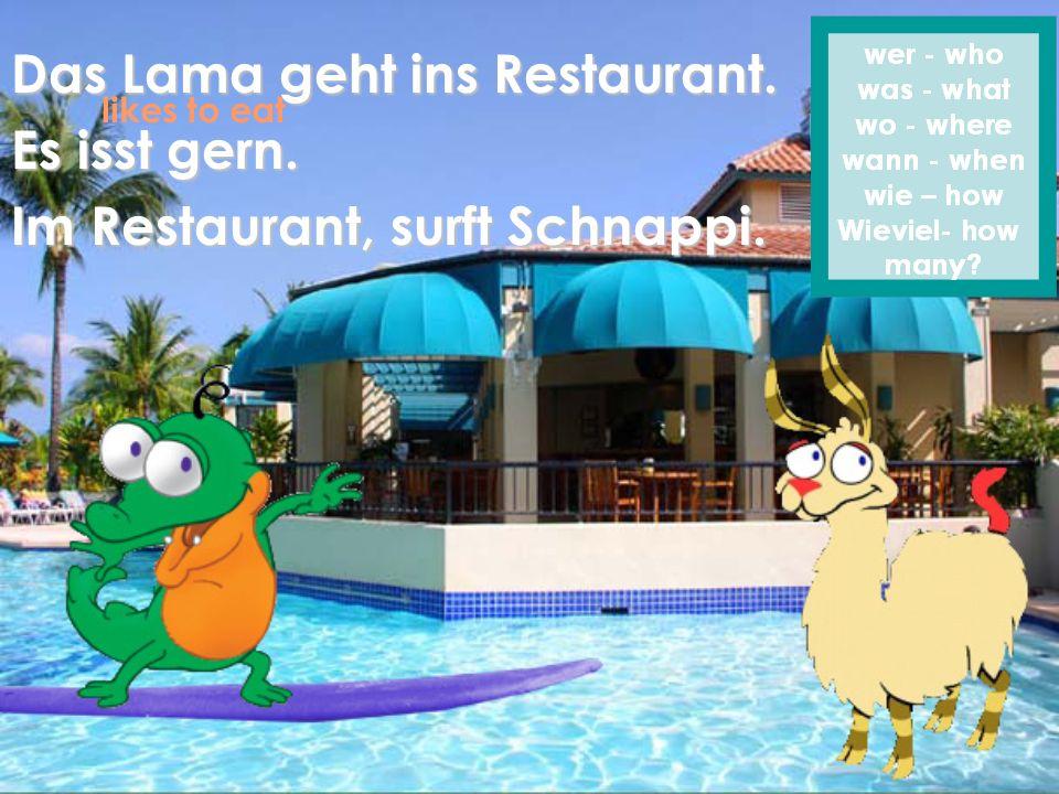 Das Lama geht ins Restaurant. Es isst gern.