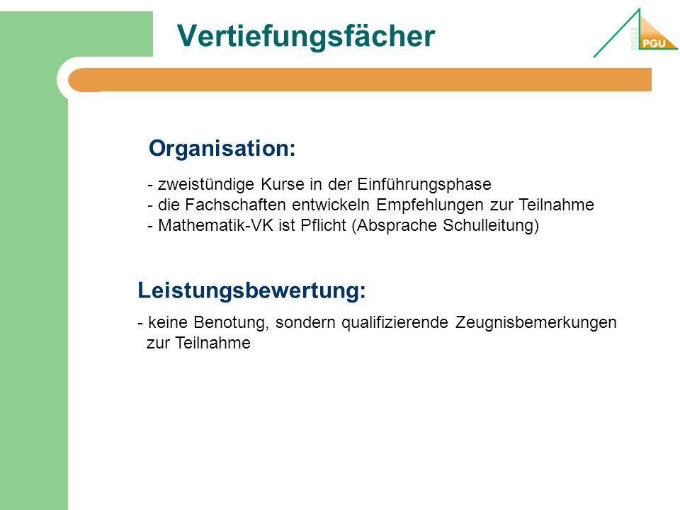 Vertiefungsfächer Organisation: Leistungsbewertung: