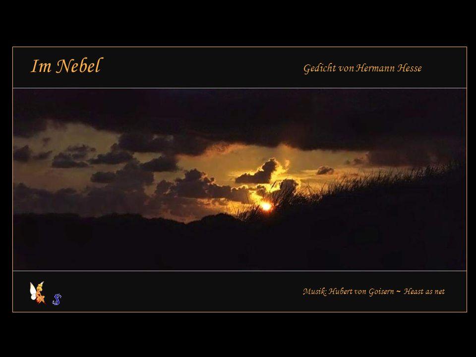 Im Nebel Gedicht von Hermann Hesse