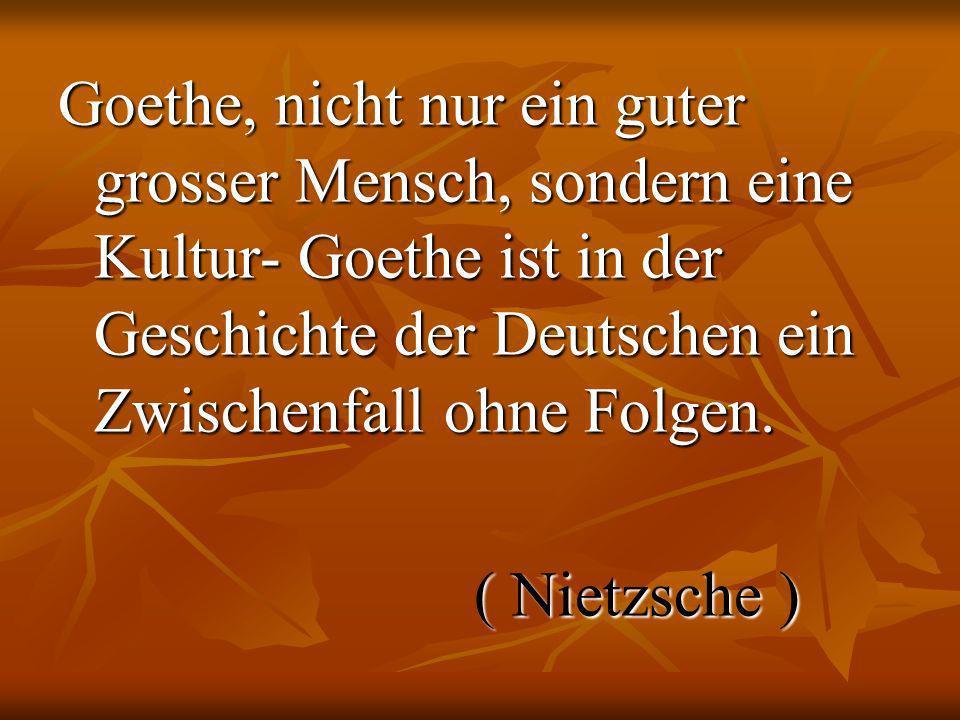 Goethe, nicht nur ein guter grosser Mensch, sondern eine Kultur- Goethe ist in der Geschichte der Deutschen ein Zwischenfall ohne Folgen.